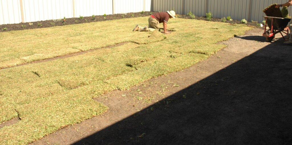 installing grass
