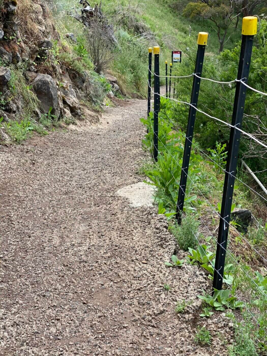 Turpin Falls steps